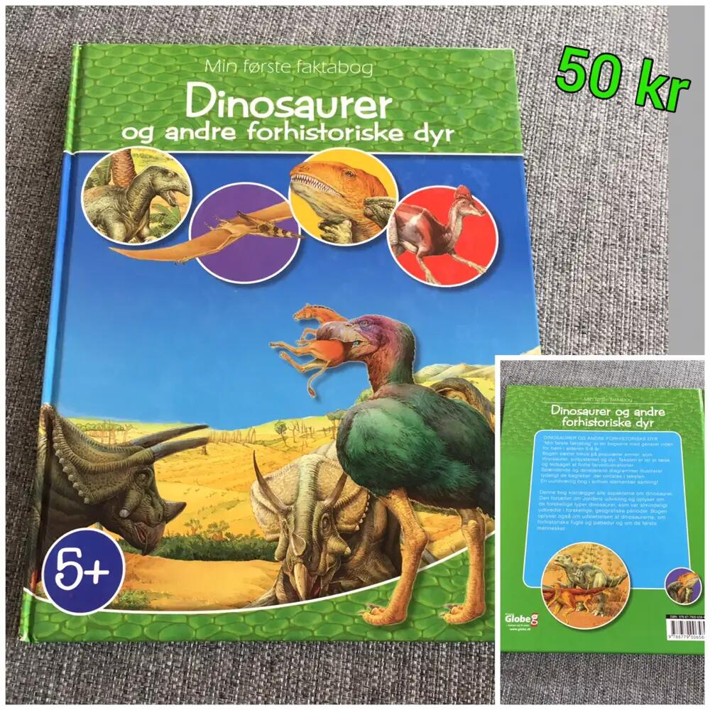 Dinosaurer og andre.... Bog